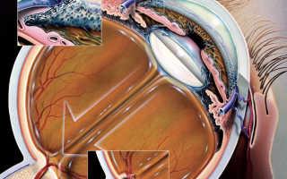 Тренировка для глаз для улучшения зрения