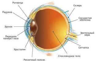 Дистрофия сетчатки глаза лечение