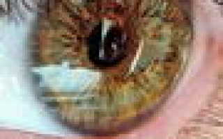 Сыворотка для кожи вокруг глаз
